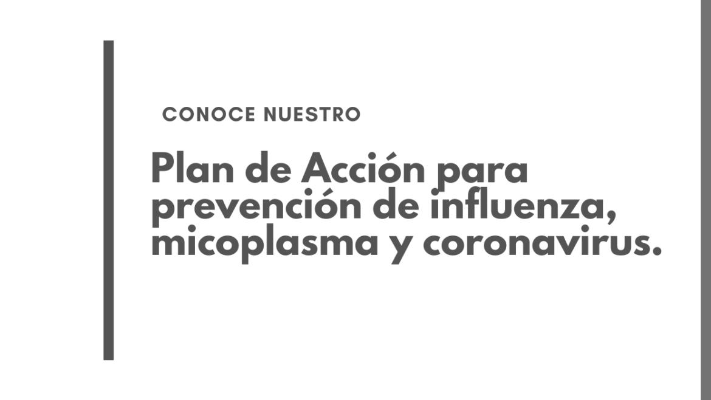 Plan de Acción para prevención de influenza, micoplasma y coronavirus